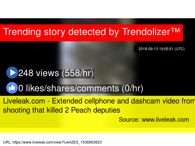 Liveleak com - Extended cellphone and dashcam video from shooting